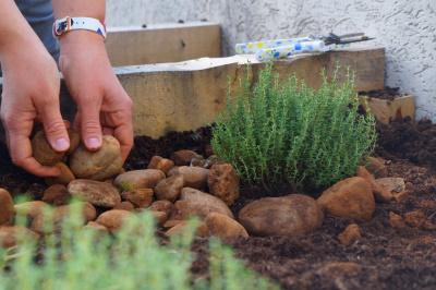 Odiceo : un nouveau jardin sur les toits !